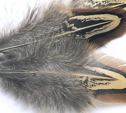 Pheasant Body Feathers