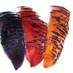Golden Pheasant Dyed 1/2 Tippets