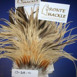 Bronte Hackle Cock Saddles               cs-2019-10