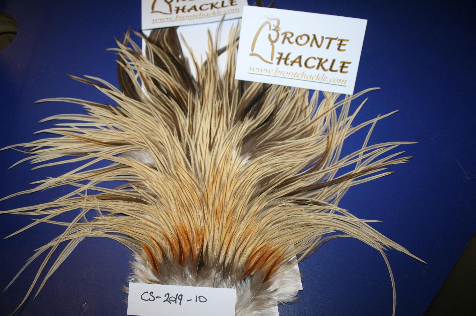 Bronte Hackle Cock Saddles               cs-2019-10