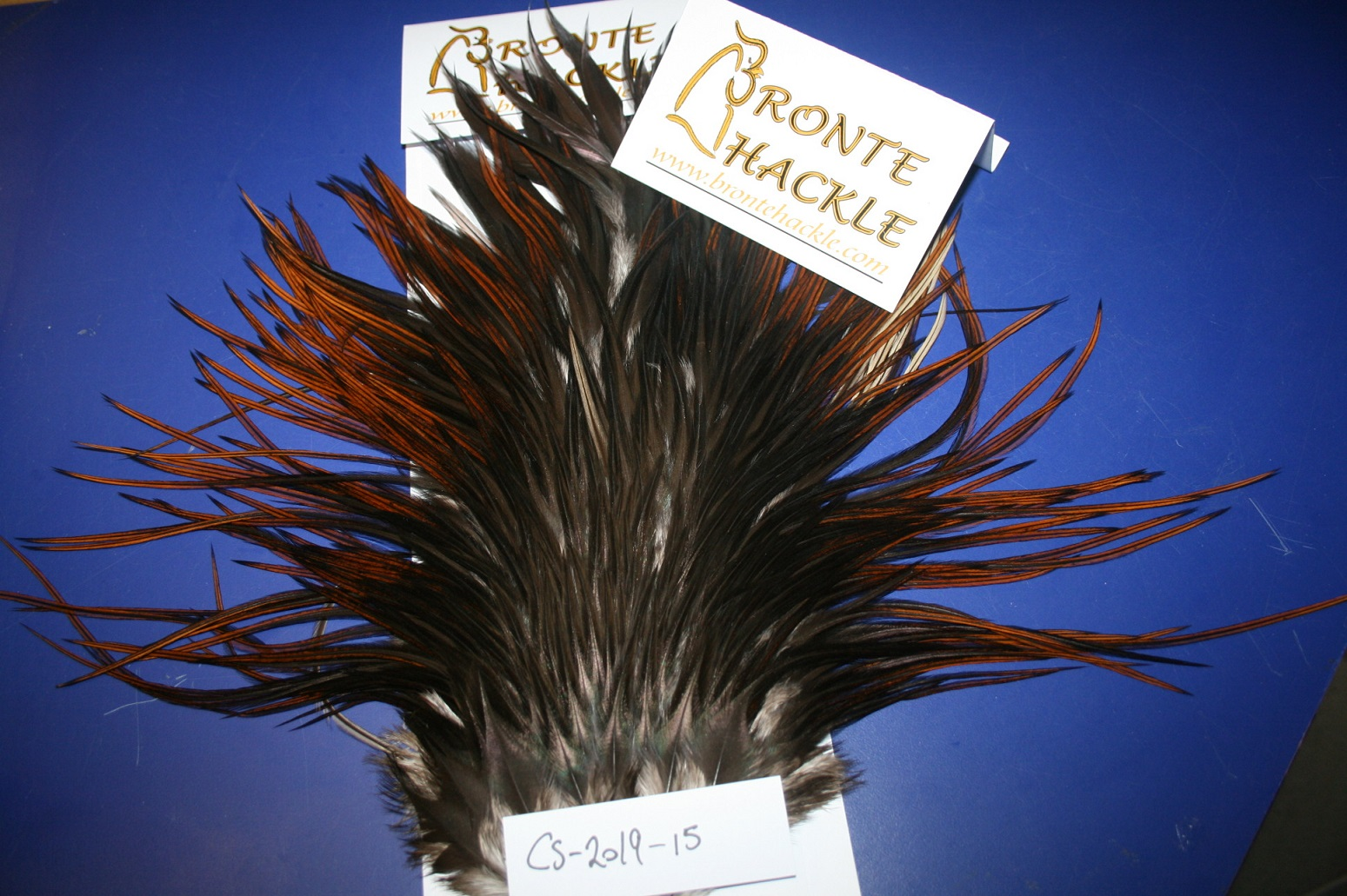 Bronte Hackle Cock Saddles               cs-2019-15