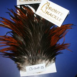 Bronte Hackle Cock Saddles               cs-2019-25
