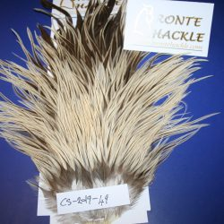 Bronte Hackle Cock Saddles               cs-2019-49