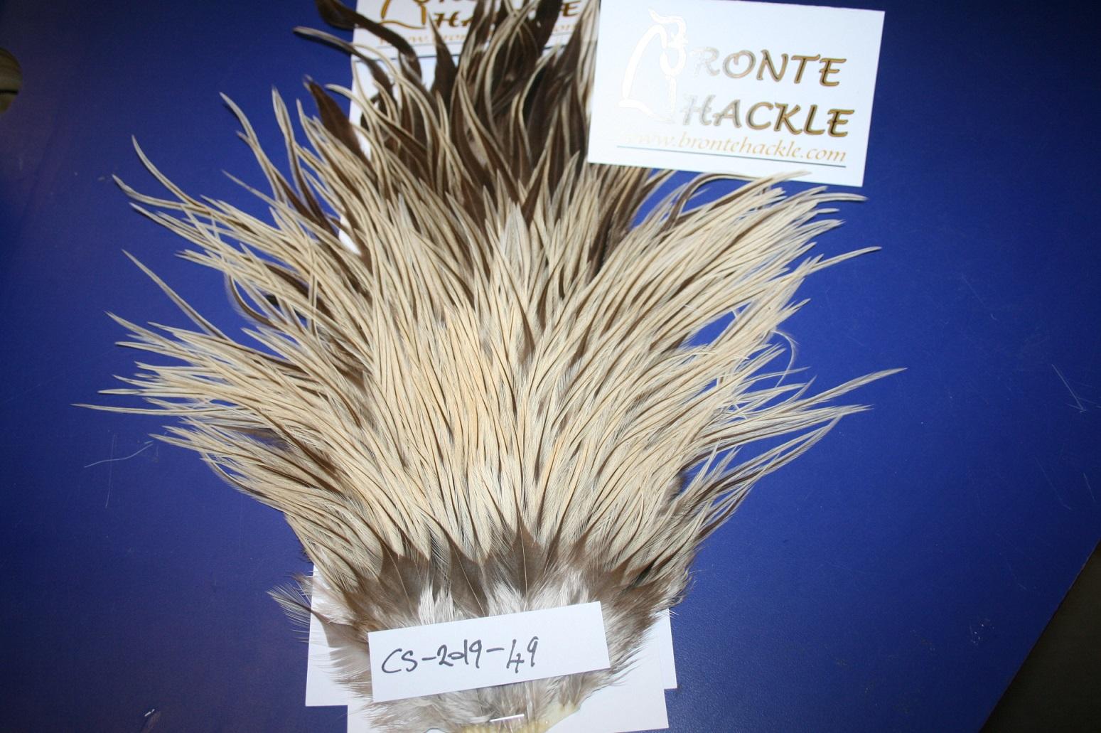 Bronte Hackle Cock Saddles               cs-2019-49