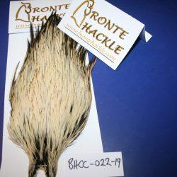 Bronte Hackle Cock Cape   cc-2019-22
