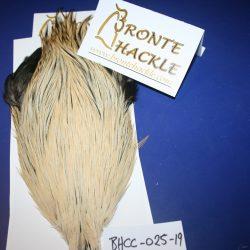 Bronte Hackle Cock Cape   cc-2019-25